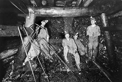 Coal Mine from Festival Fist Business